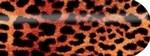 Blixz Folie Cheetah
